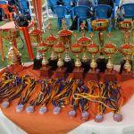 Los trofeos y medallas